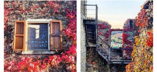 #testacuoredita, venerdì 9 novembre alle 12.05, apre una finestra sull'autunno!