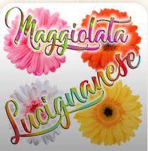 Maggiolata Lucignanese, giovedì 16 maggio ore 11.05