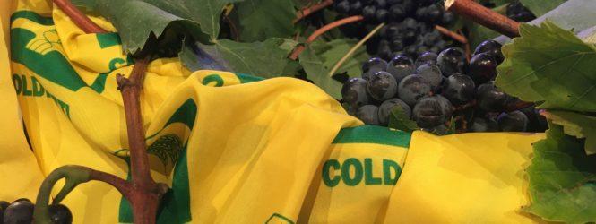 Vino e vendemmia nella rubrica #Coldiretti, giovedì 12 settembre, ore 11.35