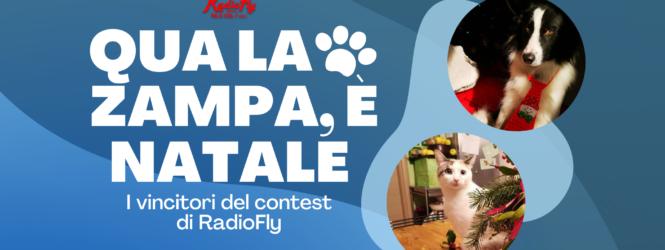 """""""Qua la zampa, è Natale"""": i vincitori delcontest di RadioFly"""